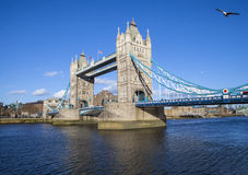 Free Tower Bridge In London Royalty Free Stock Photos - 50947288