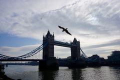 Tower Bridge. In London Royalty Free Stock Images