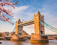Tower bridge in London at spring Stock Images