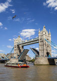 Tower Bridge Opening Up Over the River Thames in London Stock Image