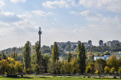 Tower, buildings and trees landscape in a city from Romania Stock Photos