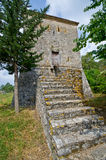 Tower in Butrint, Albania Royalty Free Stock Photos