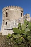 Tower and cactus, vertical Royalty Free Stock Images