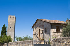 Tower and Campo Cialdi. Tarquinia. Lazio. Italy. Royalty Free Stock Photos