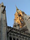 Tower of the cathedral Notre-Dame Royalty Free Stock Photography