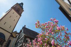 Tower of the Catholic parish church, Haslach Stock Images