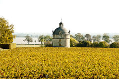 The tower of Chateau Latour Royalty Free Stock Photo