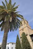 Tower church and palm Royalty Free Stock Photography