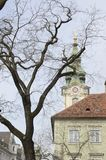 Tower church and tree Royalty Free Stock Images