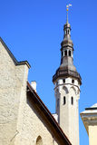 Tower of City hall in Tallin Stock Photography
