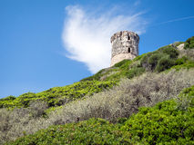Tower in Corsica. The famous ancient tower in Corsica Royalty Free Stock Image