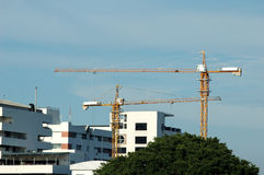 Tower cranes on a blue sky Royalty Free Stock Images
