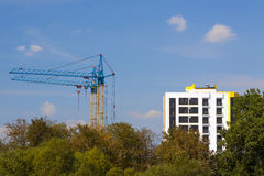 Tower cranes on a construction site near building and green tree Royalty Free Stock Image