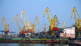 Tower Cranes In Port. Tower Cranes In The Loads Sand In Hold stock video