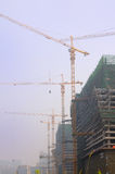 Tower cranes on site Royalty Free Stock Photo