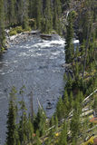 Tower Creek rapids and falls, Yellowstone National Park, Wyoming Royalty Free Stock Images