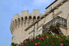 Tower. Detail of the luxurious palace and a medieval tower; pink oleander flowers and wispy clouds on the blue sky Royalty Free Stock Images