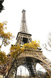 Tower eiffel. And trees, Paris eiffel tower in winter Stock Photography