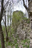 Tower and exterior wall remains from the Bologa medieval fortress. Stock Images