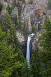 Tower Falls in Yellowstone Royalty Free Stock Image