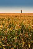 Tower on field. Tower on the corn field Stock Photos