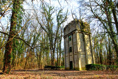 Tower in the forest. Deserted water tower in the forest Stock Photos