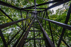 Tower in forest Royalty Free Stock Photos