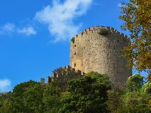 Tower of the fortress Rumeli Hisari against the blue sky and greenery. stock photography