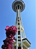 Tower of fuchsia Chihuly at Space Needle royalty free stock photos
