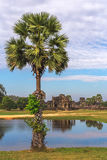 Tower and galleries of Angkor Wat Temple at morning Royalty Free Stock Photos