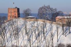 Tower of Gediminas Stock Photos