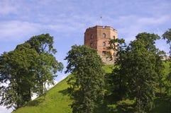 Tower of Gediminas Stock Images