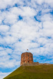 Tower of Gediminas, Vilnius Stock Photos