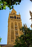 Tower Giralda, Cathedral of Sevilla Royalty Free Stock Images