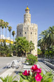 Tower of gold in Seville Stock Image