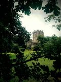 Tower among the green. A castle hidden in the green royalty free stock photography