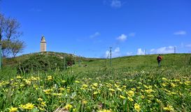 Tower of Hercules stock photography