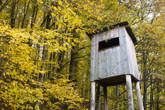 Tower hide for birdwatching. A bird watch tower built into the forest Royalty Free Stock Image