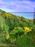 Tower Hill Landscape Australia Stock Photos