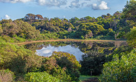 Tower Hill Reserve volcano crater lake Royalty Free Stock Images