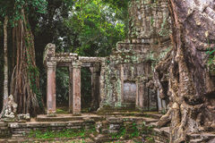 Tower, huge trees and galleries in Preah Khan Temple Royalty Free Stock Photos