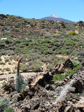 Tower of Jewels under the Teide Stock Image