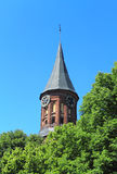 Tower Koenigsberg Cathedral. Tower Koenigsberg Cathedral, Gothic 14th century. Symbol of Kaliningrad Royalty Free Stock Photo
