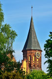Tower Koenigsberg Cathedral. Symbol of Kaliningrad, Russia Royalty Free Stock Photography