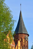 Tower Koenigsberg Cathedral, symbol of Kaliningrad, Russia Stock Photography