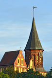 Tower Konigsberg Cathedral on a summer evening  Royalty Free Stock Photography