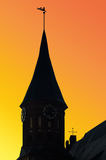 Tower Konigsberg Cathedral at sunset. Kaliningrad, Russia Royalty Free Stock Images