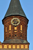 Tower Konigsberg Cathedral at sunset.  Kaliningrad, Russia Royalty Free Stock Photography