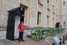 Tower of London beefeater and cannons Stock Photography