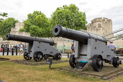 Tower of London canons Stock Images